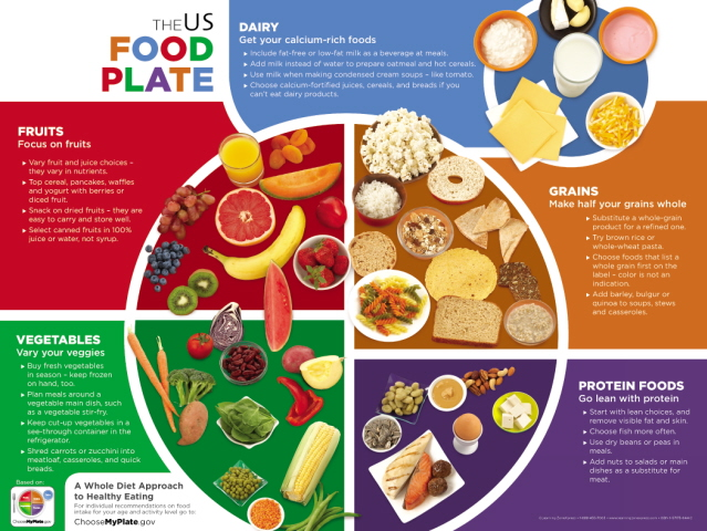 7305-us-food-plate-myplate-poster